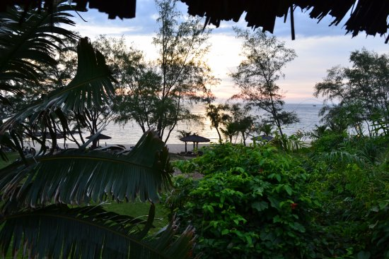 Mango Bay Resort: View fro our bungalow