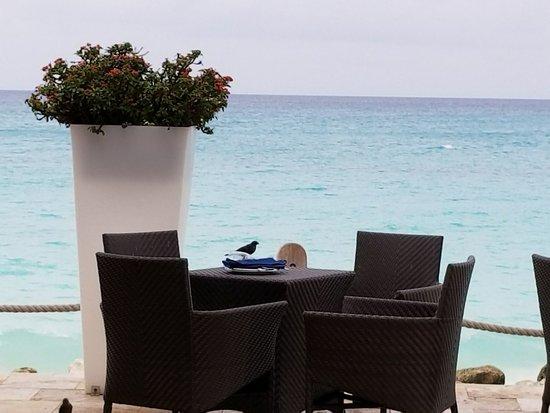 Tamarijn Aruba All Inclusive Updated 2017 Prices