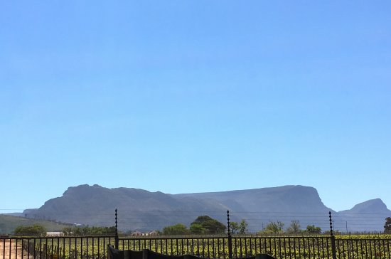 Constantia, Afrique du Sud : view to back of Table Mountain
