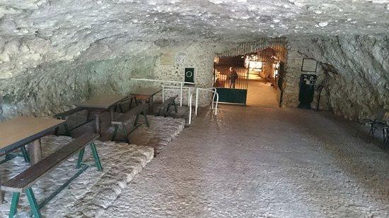 Rouffignac-Saint-Cernin-de-Reilhac, France: Entrée de la grotte