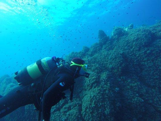 Be Free To Dive : Baptême à 6 mètres de profondeur, pas plus !