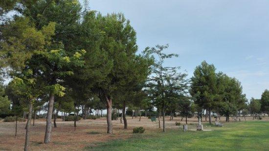 Parque Fiesta del Arbol