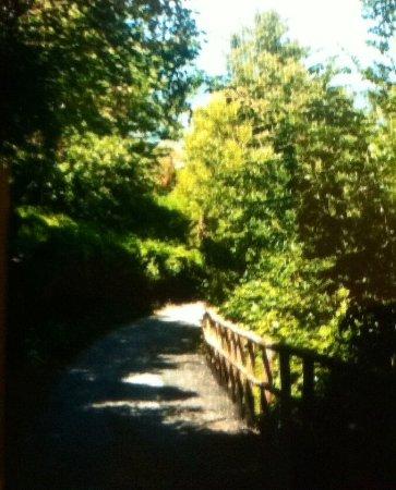 Asolo, Italia: Un tratto del percorso .....