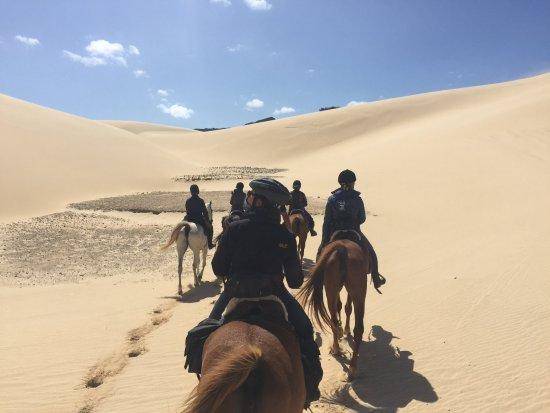 Kenton-on-Sea, South Africa: Amazing sand dunes
