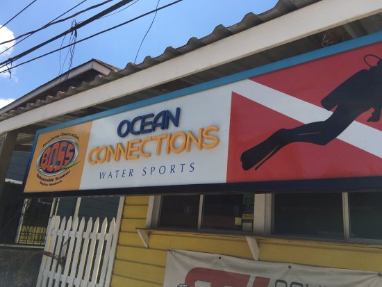West End, هندوراس: Front of Ocean Connections