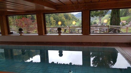Landhaus Langeck: piscine avec vue surles prés