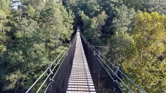 Whitesburg, GA: Suspension Bridge