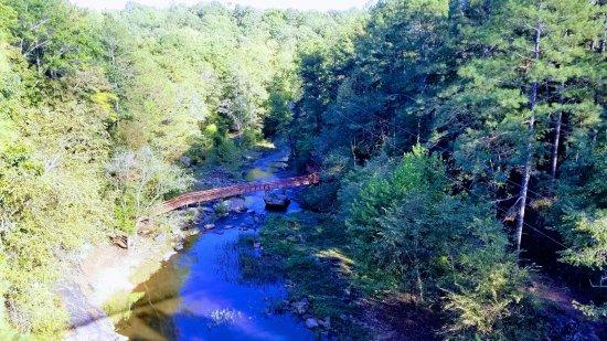 Whitesburg, GA: View from Suspension Bridge