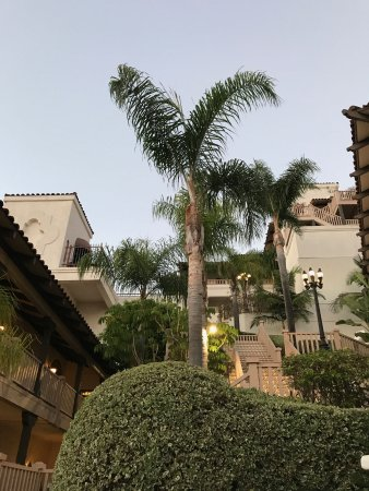 Best Western Plus Hacienda Hotel Old Town: looking up to another level
