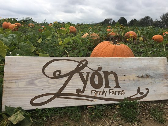 Lyon Family Farms
