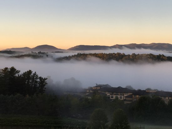 The Inn on Biltmore Estate: The view off the patio in the morning