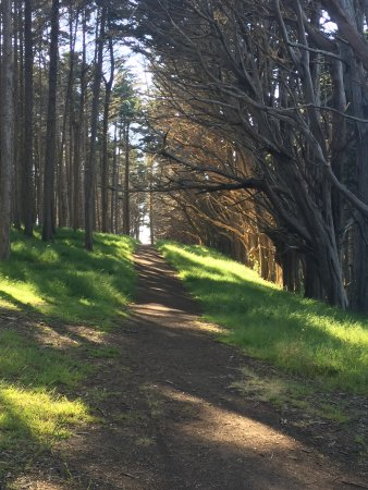 Moss Beach, CA: The walk to the beach
