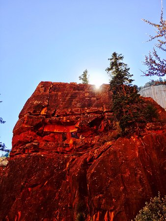 Canyon Trail Rides: Stunning Views