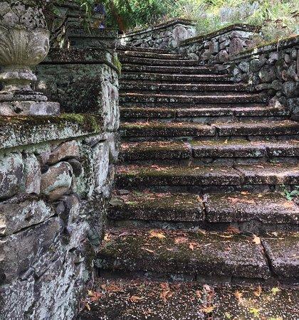 Short Hills, Nueva Jersey: One of the mossy stairways.