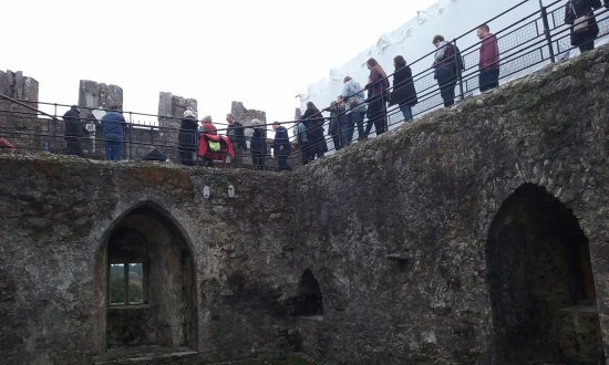 Blarney Castle & Gardens: The Blarney Stone is on the top of the tower, about 94 steps, and the passages are crowded.