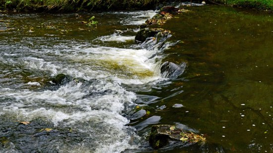 Ashbourne, UK: Swiftly flows the Dove