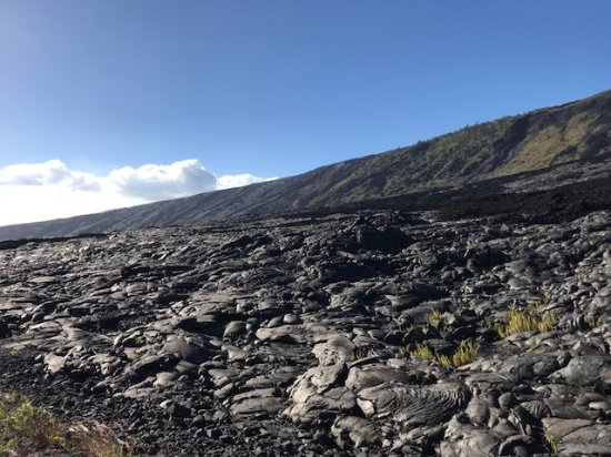 The Volcano Van Private Tours: Lava field