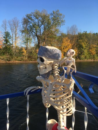 Schuylerville, Estado de Nueva York: Pirate and parrot skeletons for mid October trip