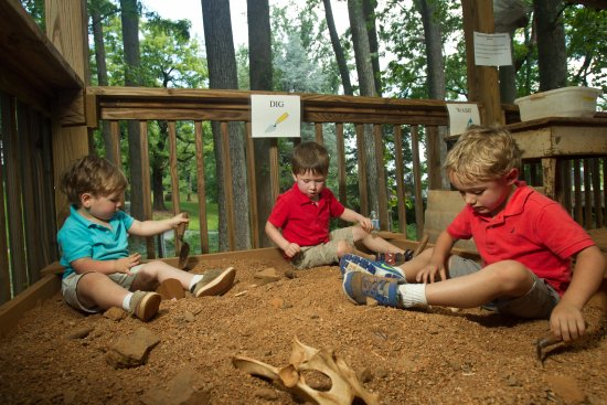 Montpelier Station, VA: Kids will love the free hands-on activities at Montpelier's archaeology lab