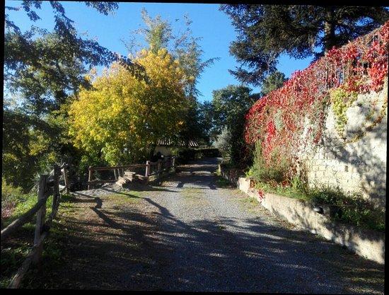 Acquapendente, Italia: Il sentiero...