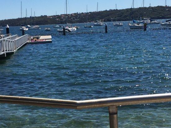 Watsons Bay, Australia: photo2.jpg