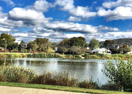 Sayre Pond