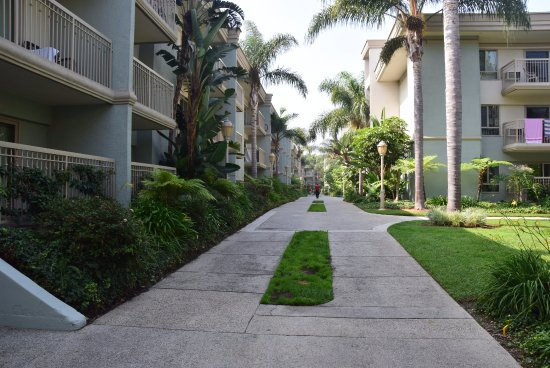 Oakwood Marina Del Rey: Large grounds that are clean and easily accessible