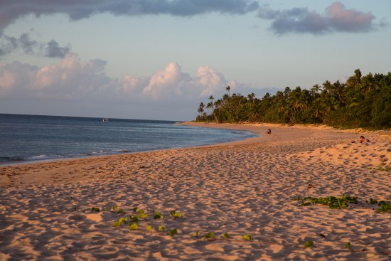 Uoleva Island, Tonga: Sunset on beach in front of Seachange