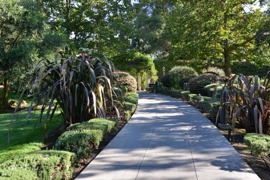 Domaine Chandon : Walkway leading to entrance