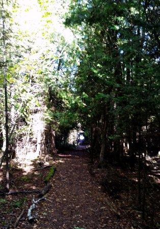 Mackinaw City, ميتشجان: History path