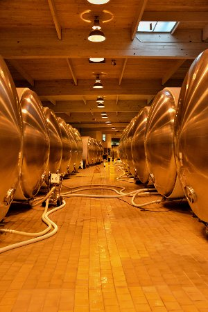 Yountville, Kalifornien: Storage for up to 1.8 million gallons!