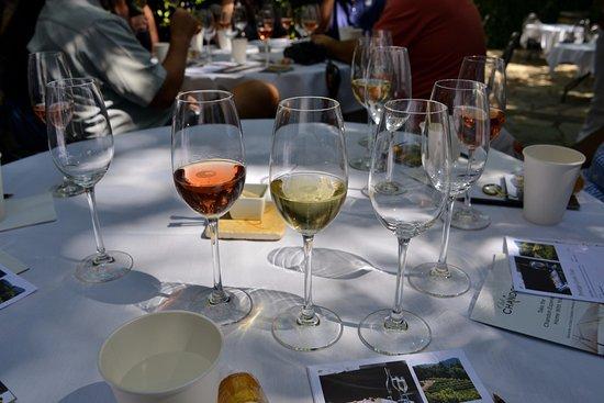 Yountville, Kalifornien: Outdoor wine tasting