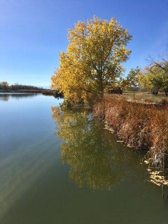 Commerce City, CO: Beautiful, man-made lake.
