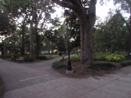 Forsyth Park: Walkway under the shade are all around the park for jogging and strolling