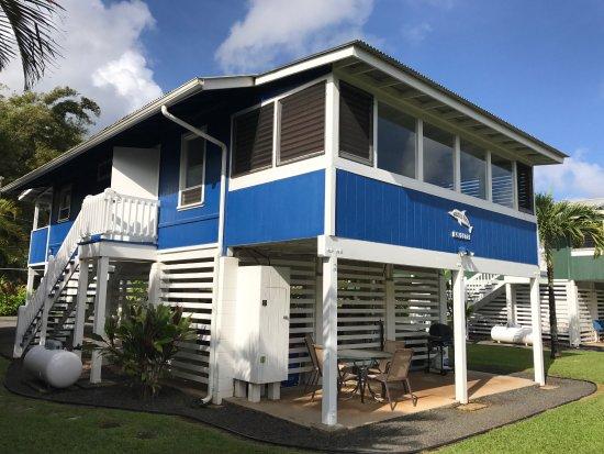 hanalei dolphin cottages cottage reviews kauai tripadvisor rh tripadvisor com hanalei bay dolphin cottages Hanalei Dolphin Kauai Menu