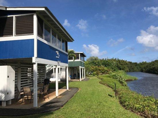 hanalei dolphin cottages cottage reviews kauai tripadvisor rh tripadvisor com Hanalei Dolphin Kauai Menu hanalei dolphin cottages kauai