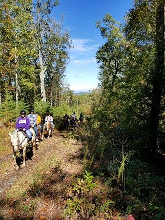 Mineral Bluff, GA: Appalachian Trail Rides