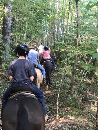 Mineral Bluff, Τζόρτζια: Appalachian Trail Rides