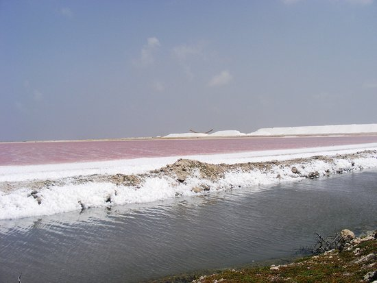 Salt Flats: from pink sea to shining sea