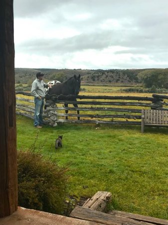 Panguitch, UT: Making friends with the resident animals