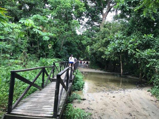 Parque Nacional Natural Tayrona: photo7.jpg