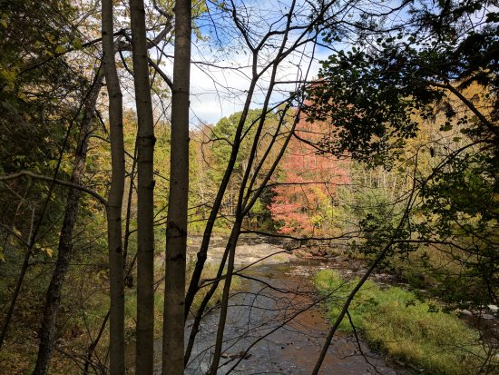 Mississippi Mills, Canada: Fall colors along the river