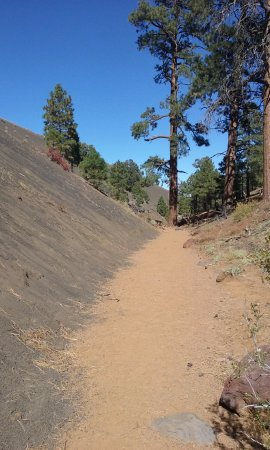 Red Mountain Trail : trail