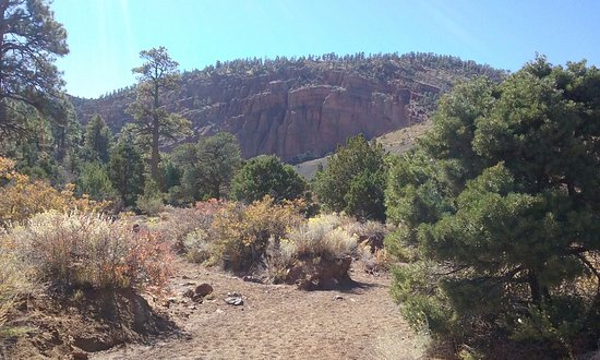 Red Mountain Trail : view of Red Mountain