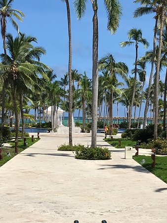 Barcelo Bavaro Palace: photo1.jpg