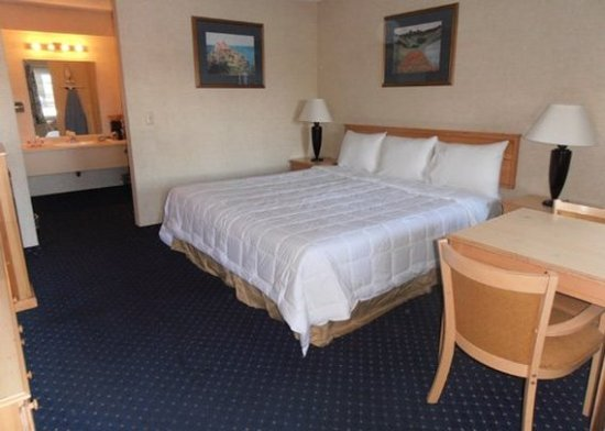 Econo Lodge Inn & Suites Central: Guest Room