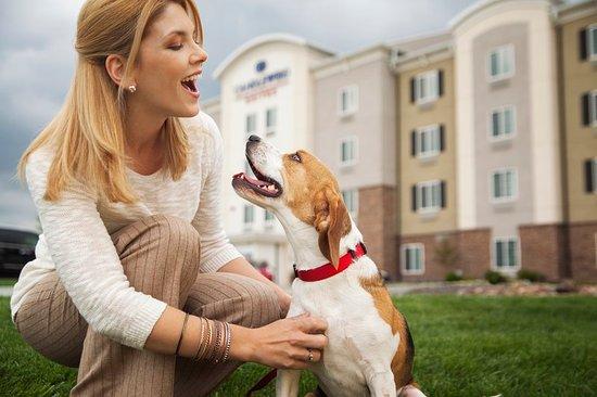 Denver - Brighton Pet Friendly Walking Area