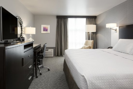 Burr Ridge, إلينوي: Guest Room with King Bed