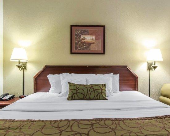 Johnson City, TN: Guest room