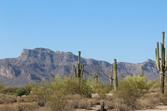 Apache Junction, AZ: View from the top